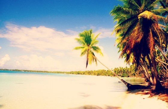 Découvrez à Tuamotu des rivages de rêves pour pêcher lors de votre enterrement de vie de garçon dans les île de la Polynésie Française.